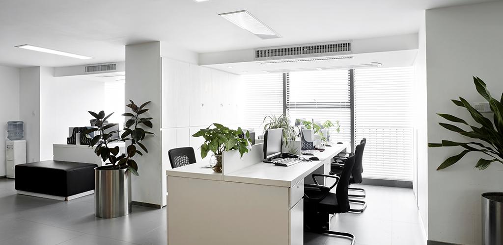 dazzling-workplace
